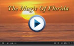 corporate videos of Port Charlotte, Florida